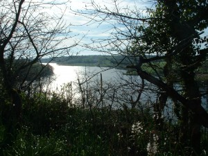 Lac du Jaunay 004